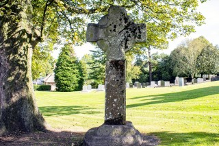 Ferns High Crosses