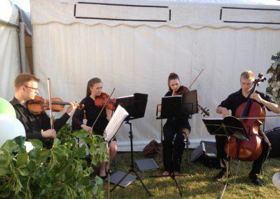 Ferns medieval gathering quartet playing
